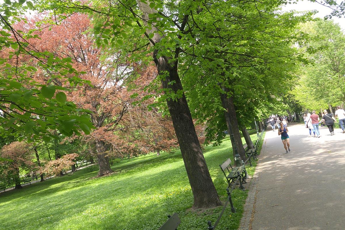 Het Planty park